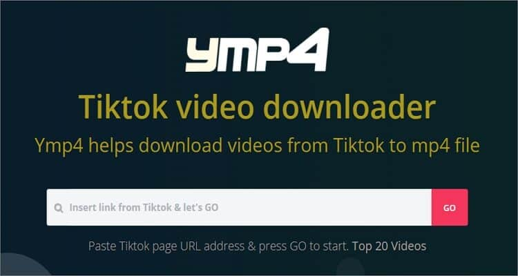 Ymp4 TikTok to MP4 Downloader