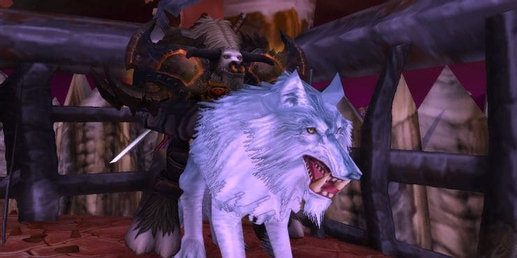 rarest mount in wow - Arctic Wolf