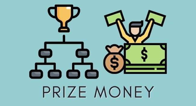 how to become a professional gamer by Prize Money