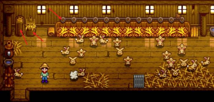 Special features of Stardew chicken coop– a detailed view